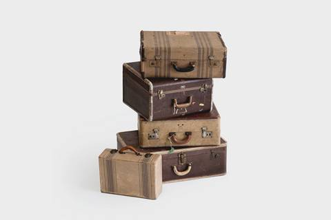 Category Trunks and Suitcases